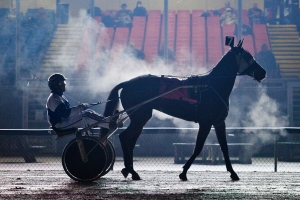 Warming up to prepare for their race, a jockey trots his horse in front of the grandstands at Sports Creek Raceway during one of the two weekly live events on Dec. 7, 2012 in Swartz Creek, Mich.