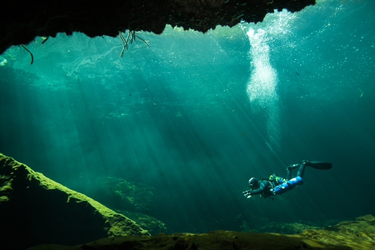 Cave diver Manuel Allende swims into the cavern of Casa Cenote in Tulum, Mexico on August 18th 2015. The underwater cavern and cave are located in a lagoon so divers must make their way through the mangroves before reaching the site.